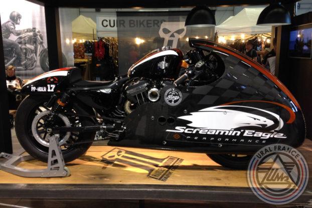 Harley-Davidson Srceamin'Eagle - American Tours Festival - URAL FRANCE